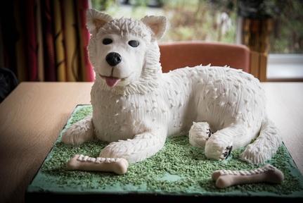 'Daisy' cake