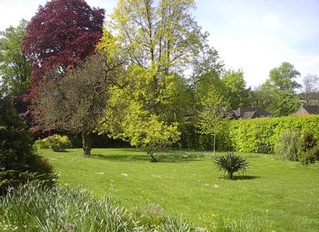 Borovere, Alton, Hampshire