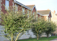 Bunkers Hill Care Home